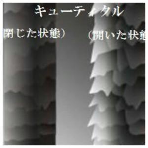 2016-02-03_17.49.02